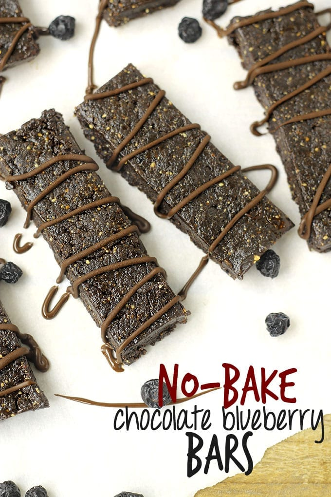 No-Bake Chocolate Blueberry Bars