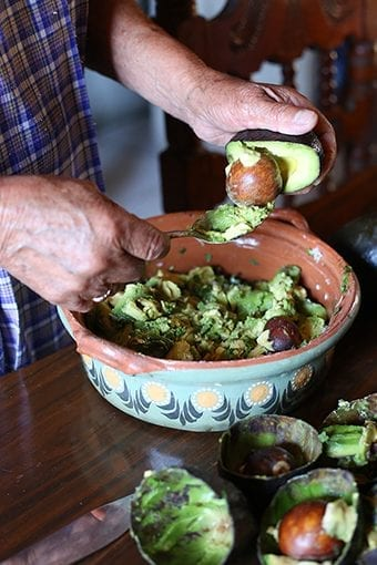 traditional-guacamole-travel