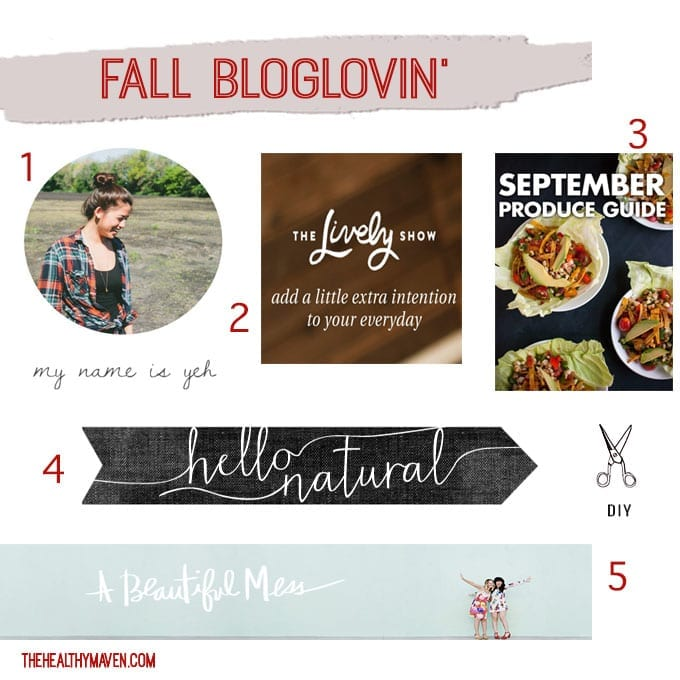 Fall Bloglovin- sites I'm loving from around the web // thehealthymaven.com