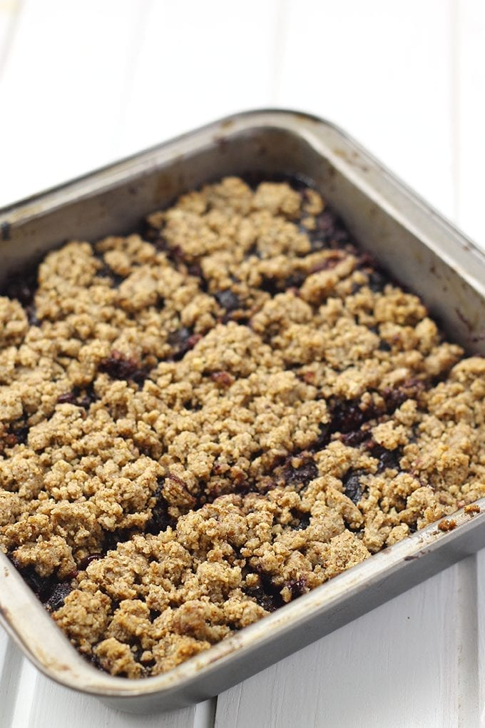 These paleo and vegan Blueberry Hazelnut Crumb Bars are made with wild summer blueberries, sweetened with a touch of maple syrup on a hazelnut crust and crumble. They will fill your sweet tooth all summer long!