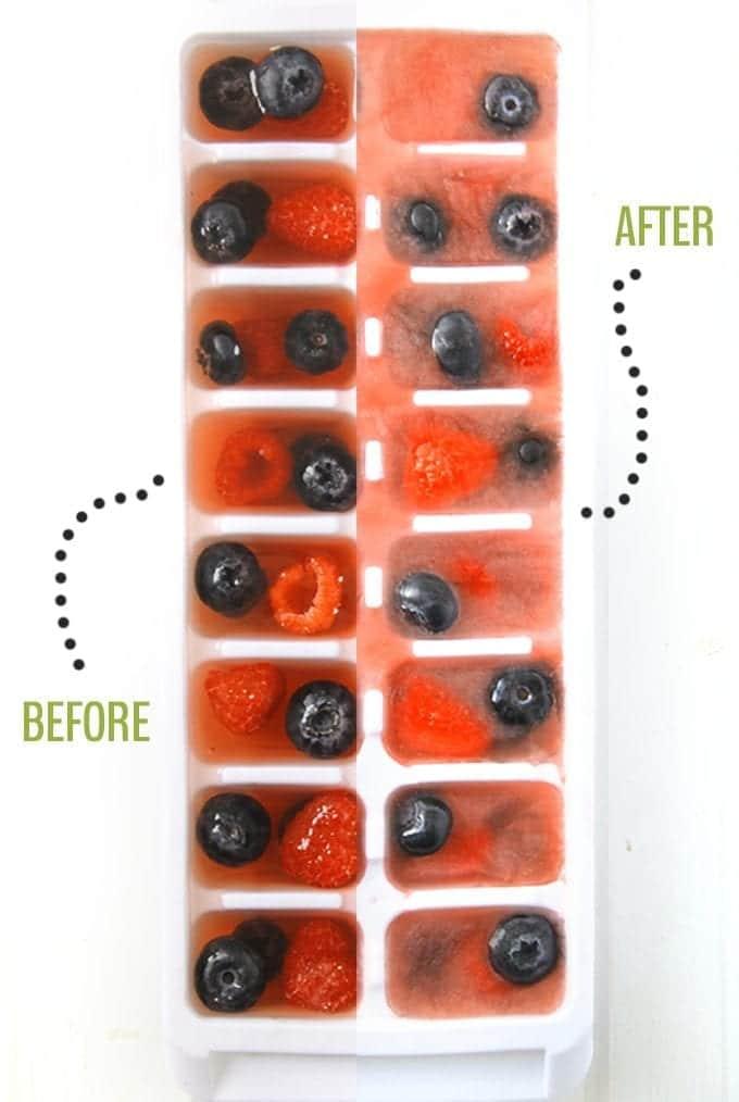 Antioxidant-Ice-Cubes-21