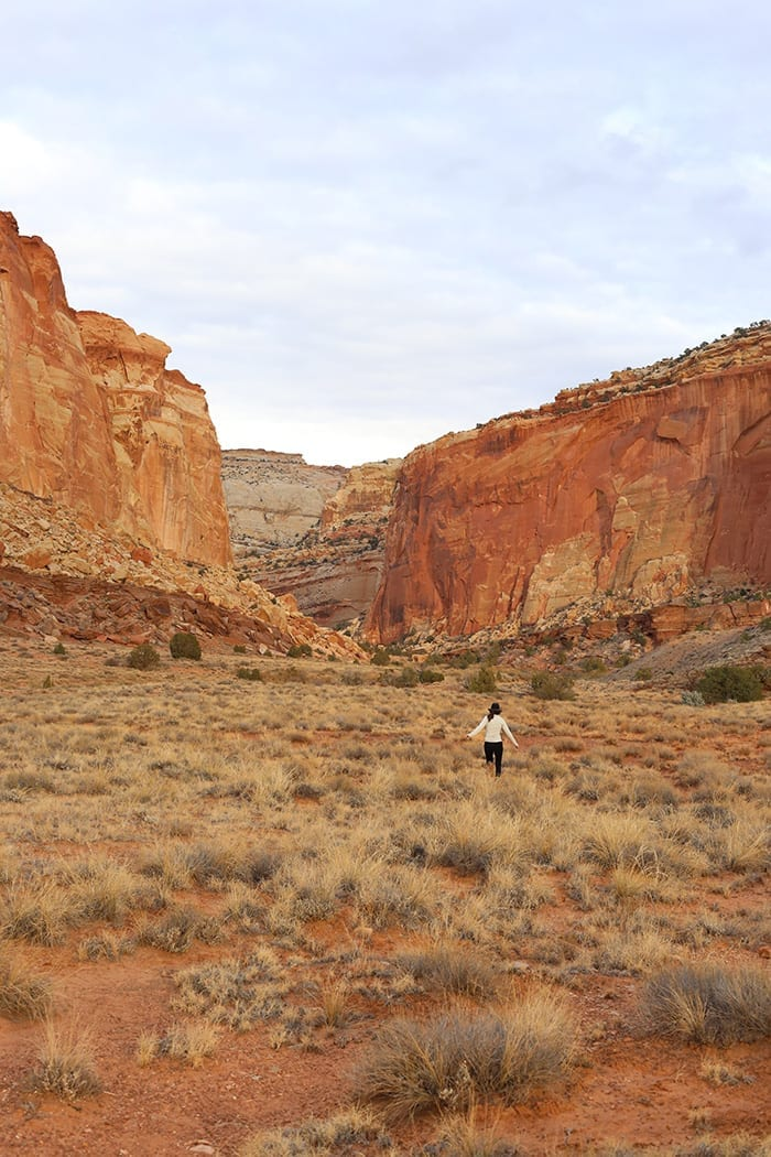 A visit to Capitol Reef National Park - The Healthy Maven