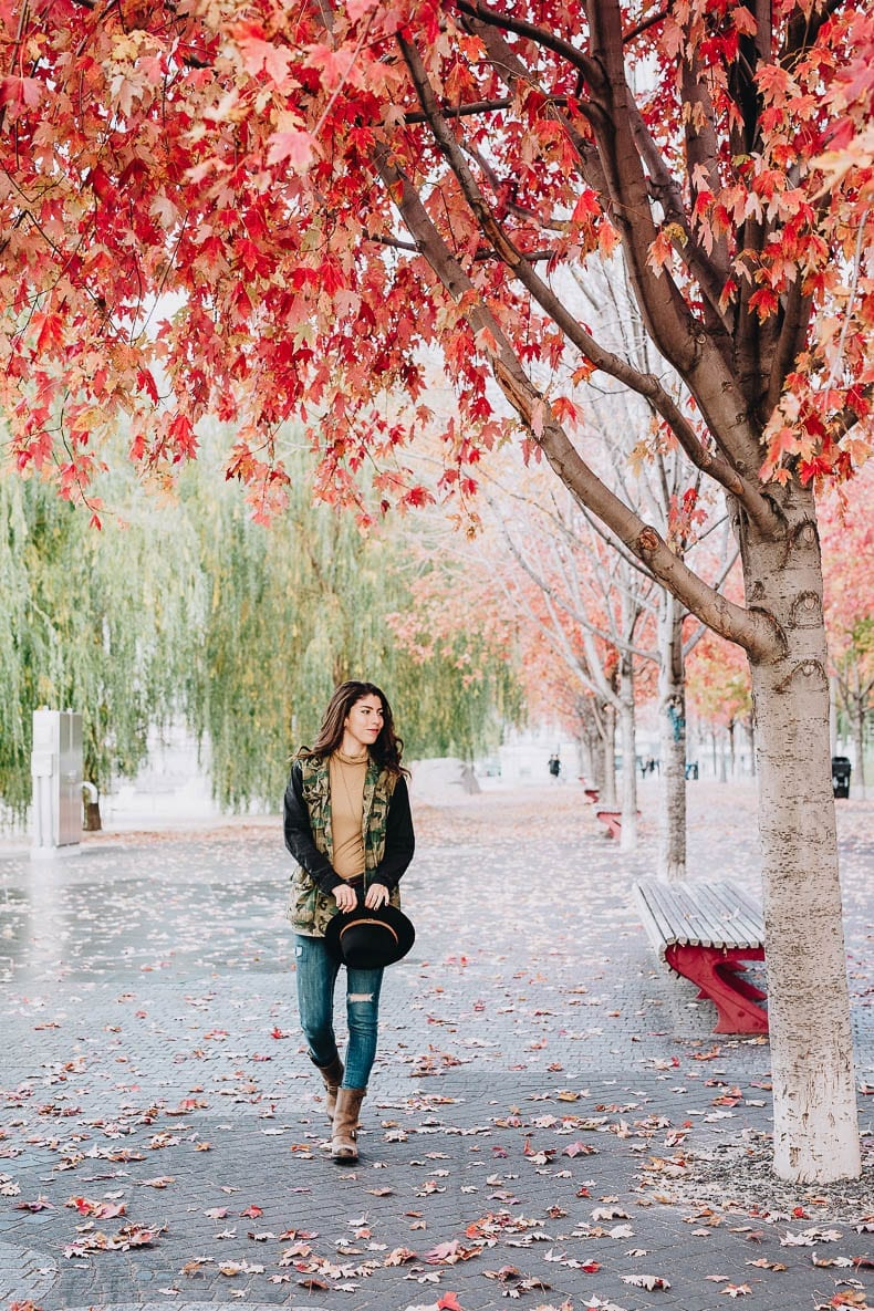 Seasonal Vibes - Volume 1 - All the fall feels with The Healthy Maven