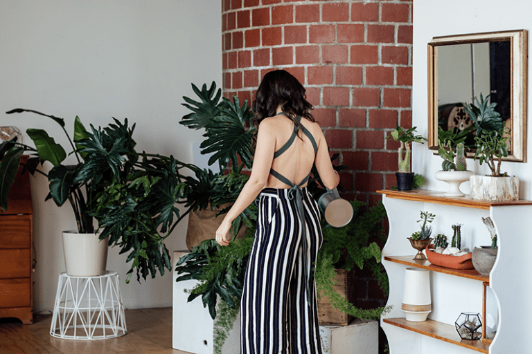 Houseplants seem to be all the rage these days. And for good reason! Of course, they're pretty and trendy but they also have legitimate health and wellness benefits. They're not just background decor - they're actually good for you!