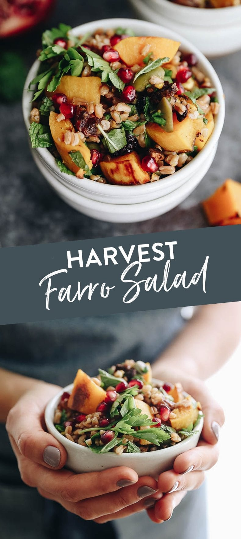 Get the best of fall with this Harvest Farro Salad with Roasted Butternut Squash and a Pomegranate Molasses Dressing. A seasonal favorite full of nutrition and delicious flavors for a side dish or main! #salad #farro #grainsalad