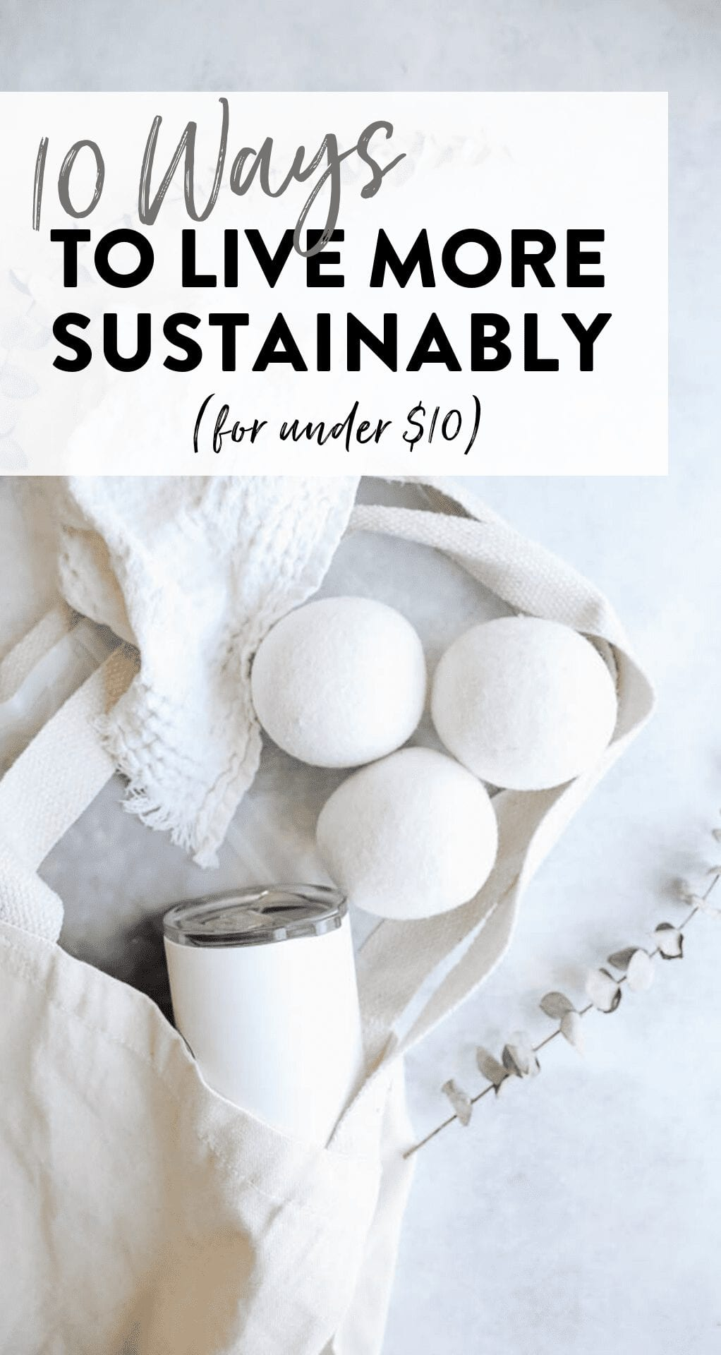 It is imperative we shift our lifestyle habits to live more sustainably, however you don't need to spend an arm and a leg making this happen. Here are 10 ways to live more sustainably for less than $10!